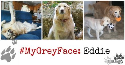 #MyGreyFace Eddie